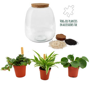 Plant Puzzle ® Discover the World Ecosysteem ()